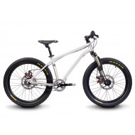 "Early Rider Belter 20"" Trail 3S"